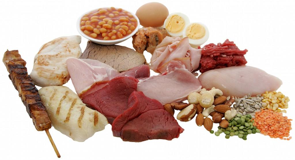 proteïnen voeding